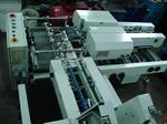 Picture of Gammerler RS111 Modular Rotary Trimming Line rebuild by